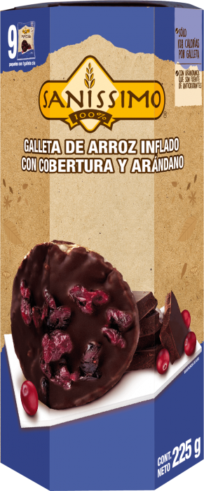 Galleta de Arroz con Chocolate y Arándano